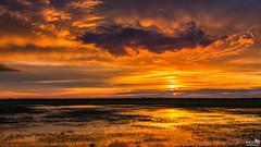 April 2016 Sunset clouds and reflections (BraCom (Bram)) Tags: bracom sunset zonsondergang cloud wolken reflection spiegeling dike dijk dirksland slikkenvanflakkee goereeoverflakkee zuidholland nederland annualreview jaaroverzicht southholland netherlands holland canoneos5dmkiii widescreen canon 169 canonef24105mm bramvanbroekhoven nl
