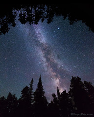 "Through a Forest Wilderness (IronRodArt - Royce Bair (""Star Shooter"")) Tags: milkyway stars montana starrynight starrynightsky trees forest silhouette nightsky nightphotography"