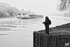 le pêcheur_DSF2748 (mich53 - thank you for your comments and 5M view) Tags: seine pêcheur hiver givre froid fleuve monochrome brume brouillard vague péniche bâteaux navigation fuji fujifilm xf1655mmf28rlmwr xt1 manteslaville france îledefrance winter frosted cold river mist fog wave barge boats landscape fischer frost kalt fluss einfarbig nebel welle hausboot boote landschaft fisherman ondulations ondes wellen waves 4winter