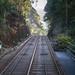 Tram Tracks to the Peak - Hong Kong