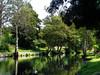 Fráguas (António José Rocha) Tags: portugal fráguas viseu aldeia rio paiva riopaiva árvores natureza água reflexos espelho paz tranquilidade paisagem beleza verde