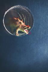 Roar! (CatMacBride) Tags: dinosaur book circle cave roar
