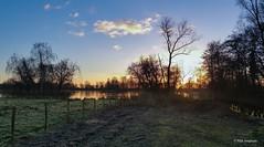 Good morning (Max Jongkoen) Tags: hff tweegje thenetherlands fence friday outdoor goedemorgen haveaniceday
