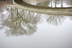 Bow Bridge (shinya) Tags: centralpark thelake