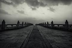 Into the darkness (Dahai Z) Tags: 北京 夏天 颐和园 beijing china garden summer2016 summerpalace yiheyuan heavensaveus
