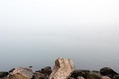 Empty sea (imagesbystefan.com) Tags: view sea ocean coast rock coastline shore seascape baltic balticsea landscape nature outdoors fog foggy covered empty moody water stone surreal scenic scene horizon mist background surface sweden