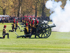 The Queen's Birthday (wirehead) Tags: cannon hydepark ep3 14150mm