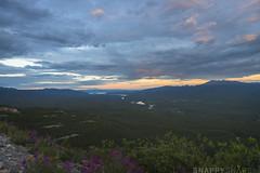 Grey Mountain Whitehorse 9 (Snappy_Snaps) Tags: canada yukon wilderness whitehorse greymountain northerncanada exploreyukon
