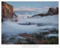 The Valley, Autumn Fog, Evening (G Dan Mitchell) Tags: yosemite national park valley tunnel view clouds mist fog autumn fall season forest elcapitan halfdone sierra nevada california dusk evening