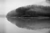 Dewey Lake, 1 January 2017 (Jeff Damron) Tags: blackandwhite deweylake kentucky monochrome 2017 fujifilm xt1