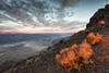 Awakening (Kirk Lougheed) Tags: blackmountains california dantesview deathvalley deathvalleynationalpark panamintmountains usa unitedstates dawn landscape morning nationalpark outdoor sunrise