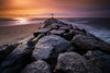Moriches Inlet (djrocks66) Tags: nature outdoors winter cold snow sunset sunrise animals wildlife deer run beach ocean dunes water shore rocks birds bif long island ny fuji fujifilm xt2 landscapes waterscapes oceanscapes hiking