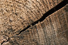 The rift (sdejongh) Tags: abstract crack detail lightning macrophotography material nature rift rip rupture shape sharpness texture wood