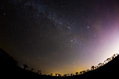 Night in Bretagne (Zeeyolq Photography) Tags: bretagne france milizac milkyway nature night sky space stars étoiles