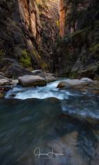 Rush Hour (J.Lynch Photography) Tags: fall virginriver canon 5dsr utah glowing slotcanyon southernutah zion narrows