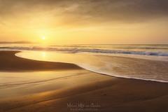 Atardecer en la playa (Mimadeo) Tags: beach sunset wave foam shore coast water landscape sea beautiful coastline ocean sunrise golden sunshine shoreline dawn dusk gold summer light orange sunlight seaside sun