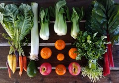 Suzie's CSA box, Week of Feb. 13 - 19