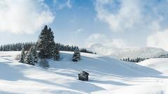 #lovetirol - Winter Wonderland (photofalk) Tags: at achenkirch achensee achenseeregion achental austria europa europe landscape landschaft tirol tyrol winter österreich gemeindeachenkirch schnee urlaub
