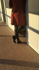 20170106_082630 (ph4eveh) Tags: black boots brown tights sexy legs woman candid