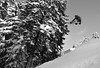 Method (Petar Milev) Tags: snowboard winter snow cold freez trick powder fresh method oldschool white black salomon fun bulgaria borovets mountain rila jump teen woods trees forest outdoor adventure freeride offpist nature