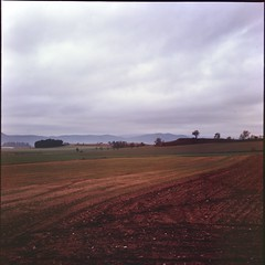 Winter morning (davidgarciadorado) Tags: vercast clouds winter landscape fields 120 film diapositive slide velvia rolleiflex ngc