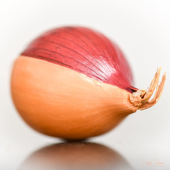 Split Personality [Explored] (Inky-NL) Tags: macromondays onion peeling itsapeeling ingridsiemons©2017 macro vegetable ui groente itsapeelingtome hmm mm peel skin food explored explore explore24jan2017 nikon nikond750 d750 105mm nikon105mmf28