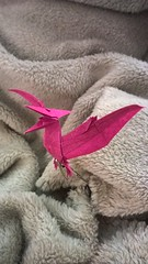 Pteranodon (F. Kawahata) (Helyades) Tags: kawahata origami paper papier pli pliage fold square carré tissue soie pteranodon dinosaur dinosaure animal