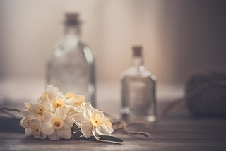 Daffodils bouquet
