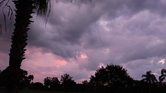 Sunrise June 22nd. (Jim Mullhaupt) Tags: morning pink blue red wallpaper sky orange sun storm color tree rain weather silhouette yellow clouds sunrise landscape dawn nikon flickr florida palm exotic p900 tropical coolpix thunder bradenton sunup mullhaupt nikoncoolpixp900 coolpixp900 nikonp900 jimmullhaupt