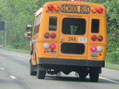 Brewster CSD #244 (ThoseGuys119) Tags: schoolbus icce icre brewsterny icfe bluebirdallamerican leonardbussales brewstercsd