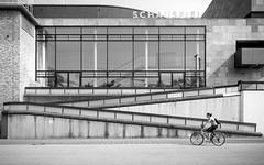 Z (Sven Hein) Tags: street summer people blackandwhite bw woman bike bicycle canon eos leute cyclist candid sommer strasse streetphotography streetlife menschen z frau schwarzweiss fahrrad radfahrerin strassenfotografie 5d3 5dmarkiii