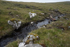 DSC01151 (mlcastle) Tags: faroeislands faroe froyar nlsoy
