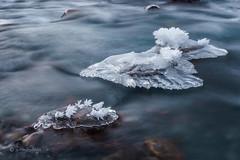 Eiskalt / Freezing (Claudia Bacher Photography) Tags: eis ice wasser water fluss river eisblumen iceflowers icicles winter graubünden langzeitbelichtung longexposure natur nature outdoor suisse schweiz switzerland sonya7r