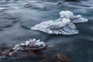 Eiskalt / Freezing
