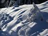 Light and shadows (michaelmueller410) Tags: harz südharz osterode riefensbeek snow tanne fichte spruce cold winter schnee woods wald forest frozen