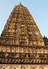 "PB140648-a (photozaki) Tags: india ""sujata kuti"" ""mahabohi temple"" ""mahabodhi mahavihara temple ""buddhist buddha buddhism ""bodhi tree"" bodhgaya gaya buddhist monk monks ashoka enlightenment ""vajrasan diamond throne"""
