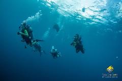 slu_bradh_V55A6044513 (kaufmankronicle) Tags: 2016 diving kidsseacamp stlucia