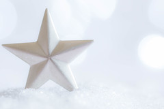 354/366: The star of the snow [Explored] (judi may) Tags: 366the2016edition 3662016 day354366 19dec16 macromonday macromondays macro holidaybokeh bokeh star glitter snow dof depthoffield pastel pastelcolours soft softness delicate simplicity simple canon7d highkey white sparkle minimal