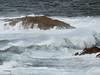 Criando percebes 1. Breeding barnacles 1. (Esetoscano) Tags: marina seascape olas waves espumas foams temporal rocas rocks oceanoatlántico atlanticocean percebes barnacles illaslagoas lagoasislands acoruña galiza galicia españa spain