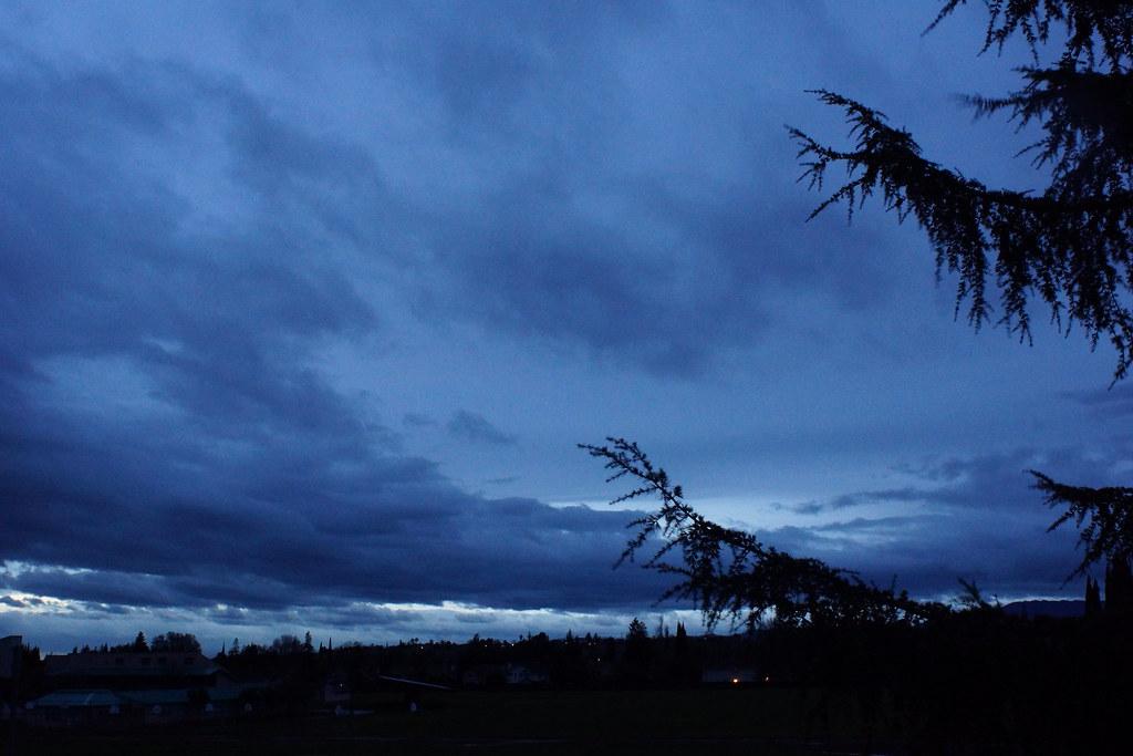 2017-01-08 Between Major Rain Storms [#1]