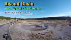 Biscuit Basin in action (Chief Bwana) Tags: wy wyoming yellowstone yellowstonenationalpark nationalparks geyser avocaspring jewelgeyser uppergeyserbasin geothermal psa104 chiefbwana video geyservideo