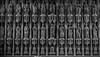 Oxford & Blenheim Palace. July 2016. ((((Lee)))) Tags: 2016 oxford city university dreaming spires river punting college all souls brasenose christ church corpus christi lincoln magdalen merton new oriel st johns botanic gardens flowers ashmolean museum balliol radcliffe camera library wife gibbs sheldonian theatre bodleian blenheim palace blenheimpalace