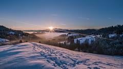 sunrise (schneider-lein) Tags: landscape snow mountains sun sunrise sonnenaufgang foggy frosty earlymorning natur nature manual manualfocus mf manuell manuellerfokus carlzeiss zeissloxia2128 loxia sonyilce7rm2 alpha7rm2 a7rii fog nebel säntis churfirsten allenwinden switzerland schweiz suisse svizzera baum tree wald forest sunstars