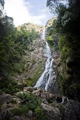 Montezuma Falls (joshuawoodhead) Tags: tasmania montezuma falls waterfall nature landscape long exposure