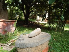 The Legend Kuchipudi Dancer Dr. Vyjayanthi Kashi's Shambhavi School of Dance Outside Photography By Chinmaya M.Rao  (160)