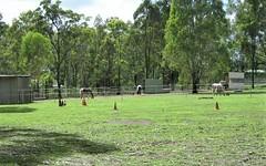 582 Springwood Road, Yarramundi NSW