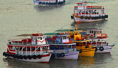 Colourful Indian Ferry boats Mumbai. (Dave Russell (1.5 million views thanks)) Tags: india indian ferry boat boats ship vessel vehicle public transport colour color colours colors water sea harbor harbour outdoor waterfront noor jahan al naseer meenaz arshiyan saanik apollo bandar mumbai bombay mooring moored afloat cruise yellow red pink purple dslr auto focus look