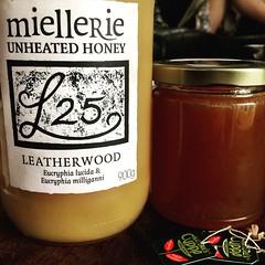 Leatherwood & Christmas Bush