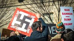 2017.02.04 No Muslim Ban 2, Washington, DC USA 00437