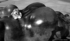 Leoncia est en Madrid con la dama de Botero (Caty V. mazarias antoranz) Tags: madrid people blackandwhite espaa libertad spain personas mujeres miedo crisis calor misterioso darkdays blanconegro angustia depresin apagado fernandobotero plazadecolon mustio desagradable dastristes sinorden mundocruel singanas desgana tristn boteromadrid singracia sinilusin sintica dasinalicientes sinfururo sinmisterio sinhumor